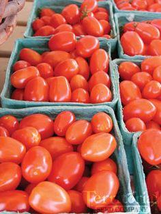 Jolly Elf Grape Tomatoes