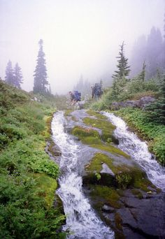 Crossing the Creek, Mt Rainier, Washington