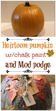 heirloom #pumpkin with #chalkpaint and #modpodge