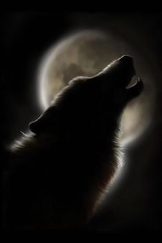 Howl at the MoOon