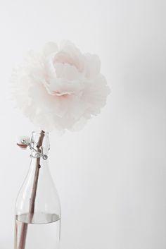 #flores #flowers #decor