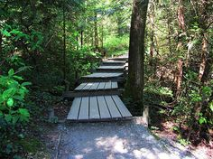 Explore Port Moody: 7 Things to Do | BCLiving