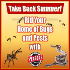 Kick out pests and enjoy your Summer bug free!