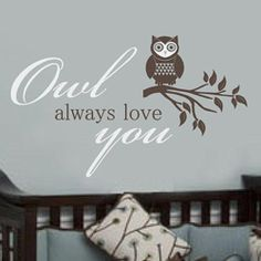 OWL ALLOWS LOVE YOU Kids Wall Quote