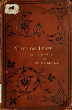 Dr Alexander Wallace...  Notes on Lilies   1879