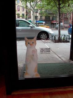 Take me home! Ambient ad from the Urban Cat League nonprofit organization #cats #marketing #advertising