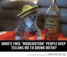 Drink With Moderation…