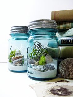 Antique Mason Jar Terrarium: My Beach Wedding..This would be cute to collect shells from the day and perhaps a letter from the groom to the bride and the bride to the groom to read on an anniversary.