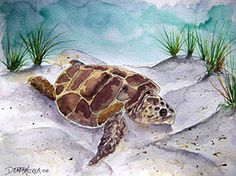 Sea Turtle by Derek McCrea  - Watercolor painting sea turtle animal wildlife nature beach seascape landscape 11 x 15 inches limited edition signed and numbered fine art print comes with a certificate of authenticity, water color line pen and ink drawing outline with wash, collectible artwork. $37.00 On Artful Vision, a portion of your purchase is donated to a participating non-profit of your choice. #art #turtle #wall #home