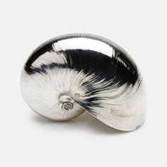 Creel and Gow Silvered Large Nautilus