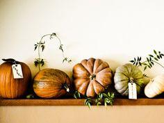 pretty autumn pumpkin display