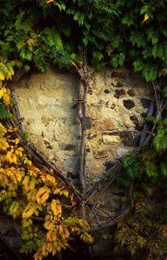 . secret gardens, jardin, heart, grape vines, garden walls, garden art, stone, beauty, trelli