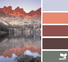 Color: Mountain Color by Design Seeds - light grey, peach, rust, brown, sage green.
