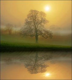 natur art, christians, favorit place, heart, nature