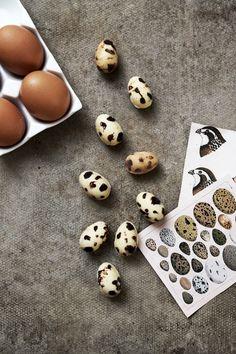 Make | Chocolate Eggs that look like Quail Eggs