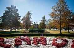 North Oval - University of Oklahoma Campus