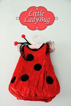 Baby Lady Bug <3