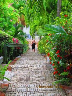 Stairs to Blackbeard's Castle, St. Thomas