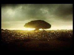 Imogen Heap -  Not You Again (+playlist)