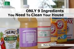 ONLY 9 Ingredients You Need To Clean Your House