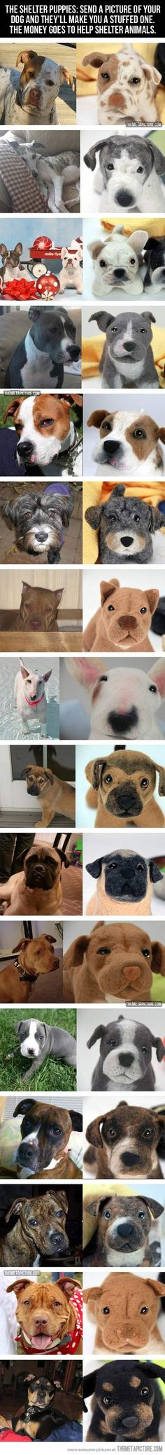 The Shelter Puppies: Send a picture of your dog and they'll make you a stuffed one. The money goes to help shelter animals! shelter anim, gift, dog picture ideas, animal shelters, shelter dogs stuffed, shelter pups, help shelter, stuf dog, shelter puppies