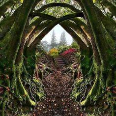 Secret Garden, Portland, Oregon