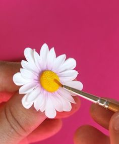 Step-by-step tutorial for making a realistic gumpaste daisy.