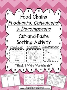 Food Chains on Pinterest | Food Chains, Food Webs and Food Chain ...