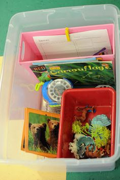 """animals and habitats """"nonfiction center"""" literacy center idea-- nonfiction animal books, figurines, viewmaster w/ animal pictures, animal cards, graphic organizer"""