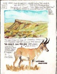 Keeping a Watercolor Art Journal | Artist's Network