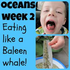 Our #Ocean unit, week 2, on how to eat like a #Baleen whale! {The Usual Mayhem}