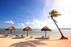 Akumal, Mexico. I want to go to there...