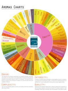 Wine aroma guide