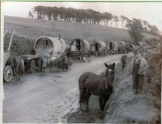 Gypsy wagons at a ho