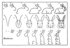 drawing tutorial kids, kid printables, grand kids, drawing rabbit, vintage kids
