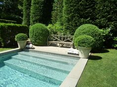 wide stair, swimming pools, stairs, dream, outdoor, rectangular pool, boxwood, hous, garden