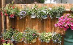 Tin Can Garden :)