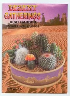 Dish Garden - A mixed variety of cactus seeds from the deserts of the Southwest. The plants come in many shapes and sizes. Cactus require very little care and can be grown very well in Dish Gardens, terrariums, in pots or warm frost-free areas outdoors. Some varieties come up in as little as 3 days and some as long as 3 weeks. $1.99