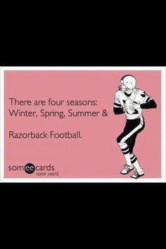 Razorback Football