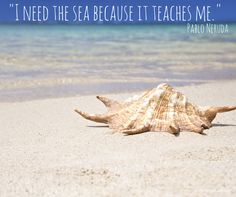 -I need the sea because it teaches me.-