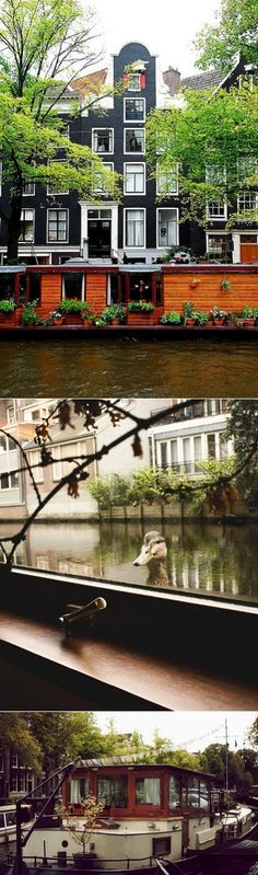 Amsterdam: Dutch Gable flat or canal houseboat?