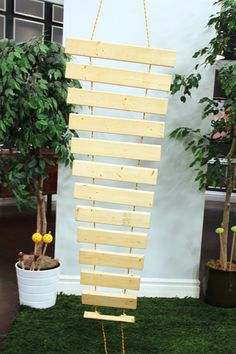 Xylophone. Frank Di Leo discovered more than flowers at Canada Blooms. He walked away from Bienenstock's natural playground exhibit with a big idea for his own backyard: an oversized DIY xylophone! On Steven and Chris
