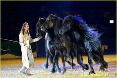 #Faszination #Pferd
