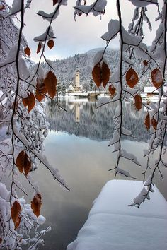 Winter, Lake Bohinj, Slovenia!