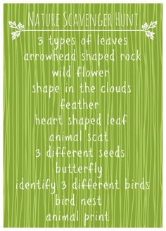 Nature Scavenger Hunt Printable - Organize and Decorate Everything