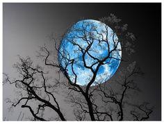 beautiful blue moon