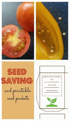 Seed Saving and free printable seed packets