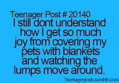 lol life, old dogs, true facts, teenag post, funni, relat, teen posts, true stories, teenager posts