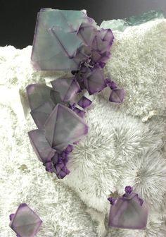 Fluorite on microcrystalline Quartz - De'an Mine, China