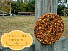 Flock Block Knock Off - Homemade Chicken Boredom Buster Winter Treat